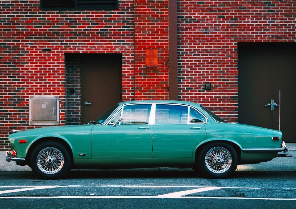 jaguar-1990257_1920