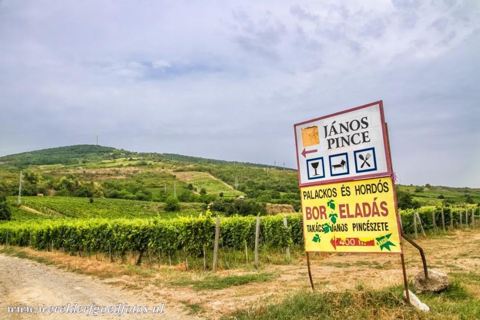 1968.Tokaj Wine Region Historic Cultural Landscape - Photo by Albertine Slotboom.jpg